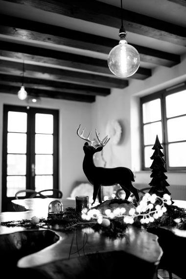 Noël_SPARR_BD©Alicia_Photographe_2019-4